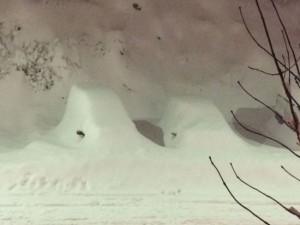 Waar is m'n auto? Hevige sneeuwval in Benasque, Huesca (bron: Carlos Barrabes).