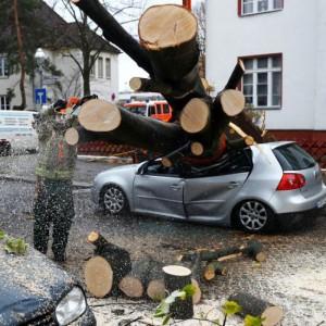 Stormschade in Berlijn afgelopen zondag (bron: Fabrizio Bensch, Reuters).