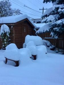 Zware sneeuwval in Calgary (bron: @CTVdawnwalton).