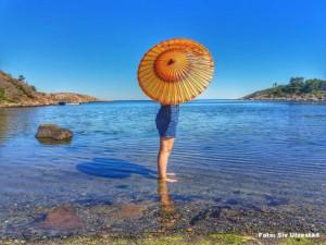 Grote zomer in Noorwegen (bron: Siv Ulvestad).